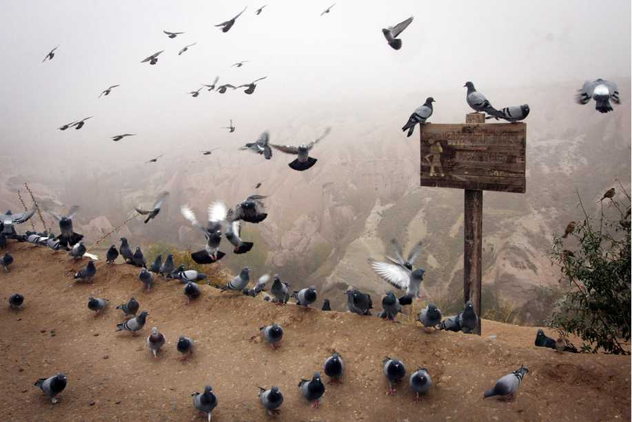 güvercinlik-vadisi-kapadokya
